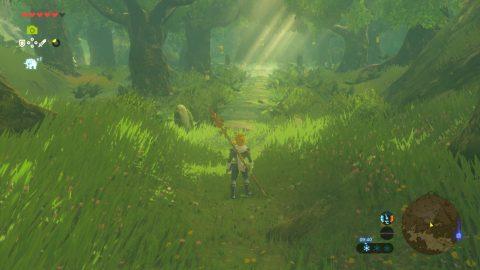 Zelda 13