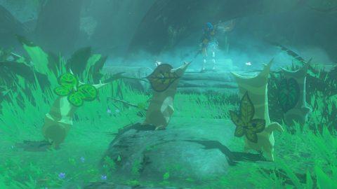 Zelda 15